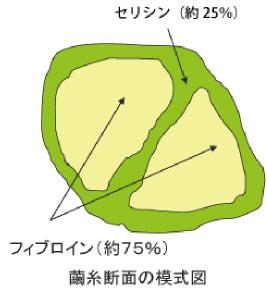 ホームシルク セリシンの図